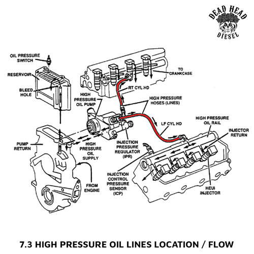 Diagram  1995 Ford 7 3 Diesel Fuel System Diagram Full