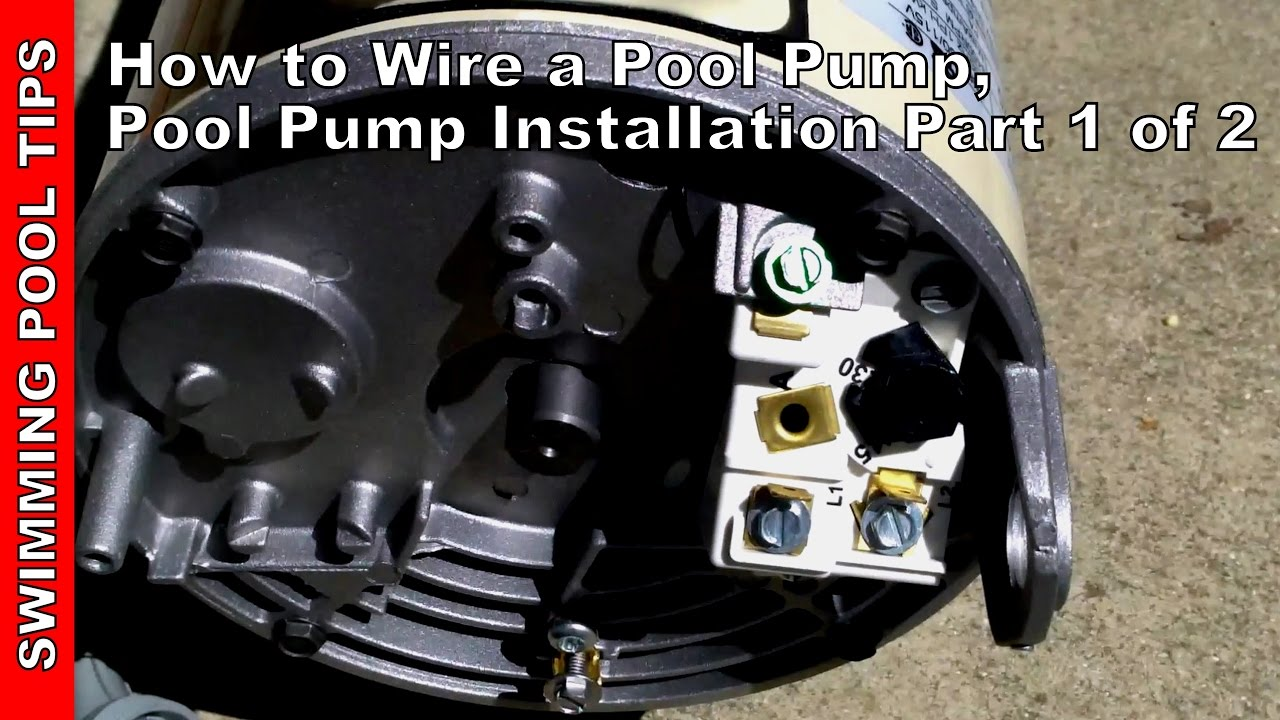 Century Centurion 1 5hp Pool Pump 230v Wiring Diagram