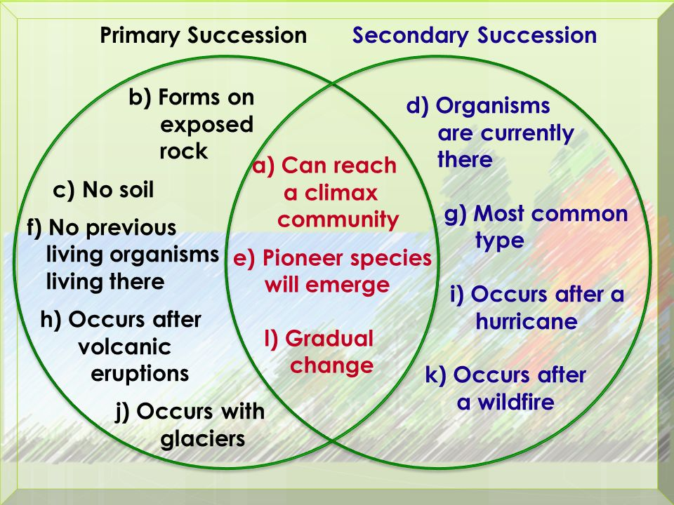 Primary And Secondary Succession Venn Diagram