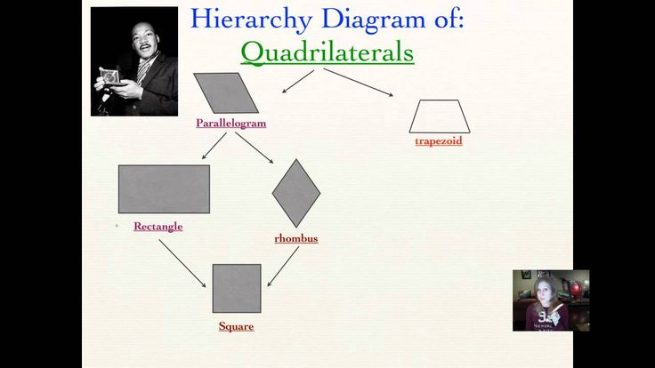 Quadrilateral Hierarchy Diagram